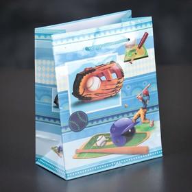 Пакет ламинированный 'Бейсбол', 12 х 15 х 5 см Ош