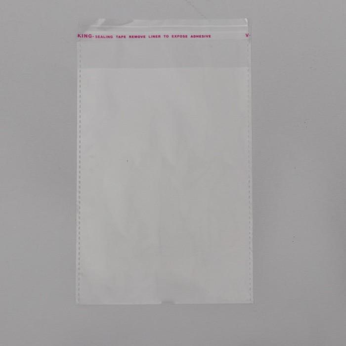 Пакет БОПП с клеевым клапаном 10 х 14/4 см, 25 мкм