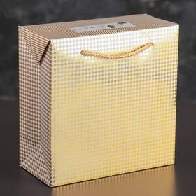 Пакет-коробка с клапаном 'Золотой ромбик', 21 х 10 х 21 см Ош