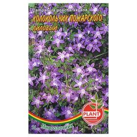 Семена цветов Колокольчик 'Пожарского лиловый', Мн, 0,03 г Ош