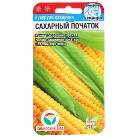 """Семена Кукуруза сахарная """"Сахарный початок"""", раннеспелая, 6 шт"""