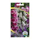 Семена цветов Наперстянка смесь окрасок, Дв, 0,1 г