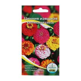 Семена цветов Цинния изящная карликовая смесь, О, 0,2-0,3 г