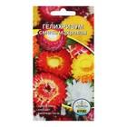 Семена цветов Гелихризум махровый смесь, О, 0,1 гр