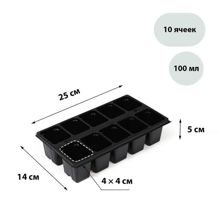кассеты для рассады купить в интернет магазине