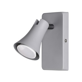Светильник REANNA 50Вт GU10 серый