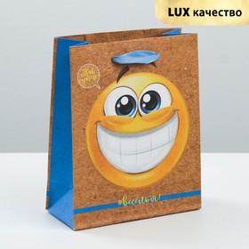 Пакет крафтовый вертикальный «Веселья и радости», 12 × 15 × 5,5 см Ош