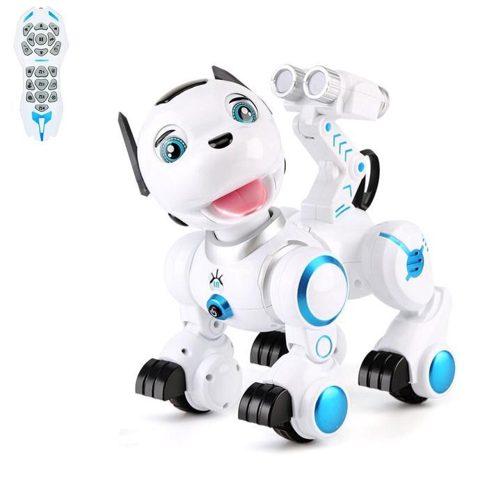 Робот интерактивный радиоуправляемый, программируемый «Дружок», световые и звуковые эффекты