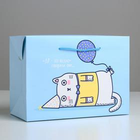 Пакет—коробка «Веселье», 28 × 20 × 13 см Ош