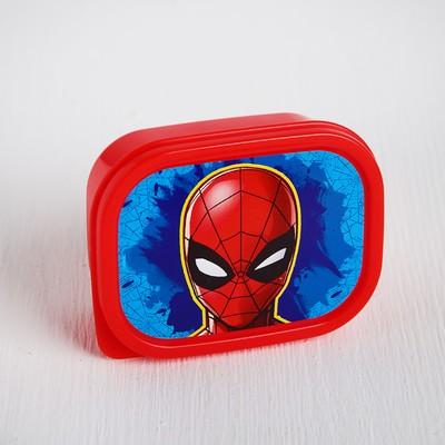 """Ланч-бокс прямоугольный 150 мл """"Человек-паук"""", Человек-паук - Фото 1"""