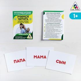 Обучающие карточки по методике Глена Домана «Учимся читать. Части тела и члены семьи», 30 карт, А6