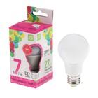 Лампа светодиодная ASD LED-A60-standard, Е27, A60, 7 Вт, 230 В, 6500 К, 630 Лм