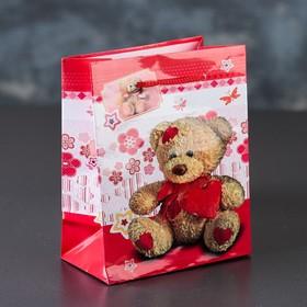 Пакет ламинированный «Медвежонок Тедди», 12 х 15 х 5 см Ош