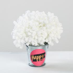 Цветочный комплимент «Счастье», 5 × 7 × 5 см Ош