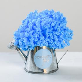 Цветочный комплимент «Маленькие радости для яркой жизни», 8.5 × 5 × 8.5 см Ош