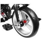 """Велосипед трёхколёсный Micio Classic Plus, колёса EVA 10""""/8"""", цвет сливовый - Фото 7"""