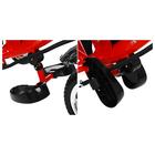 """Велосипед трёхколёсный Micio Classic, колёса EVA 10""""/8"""", цвет красный - Фото 4"""
