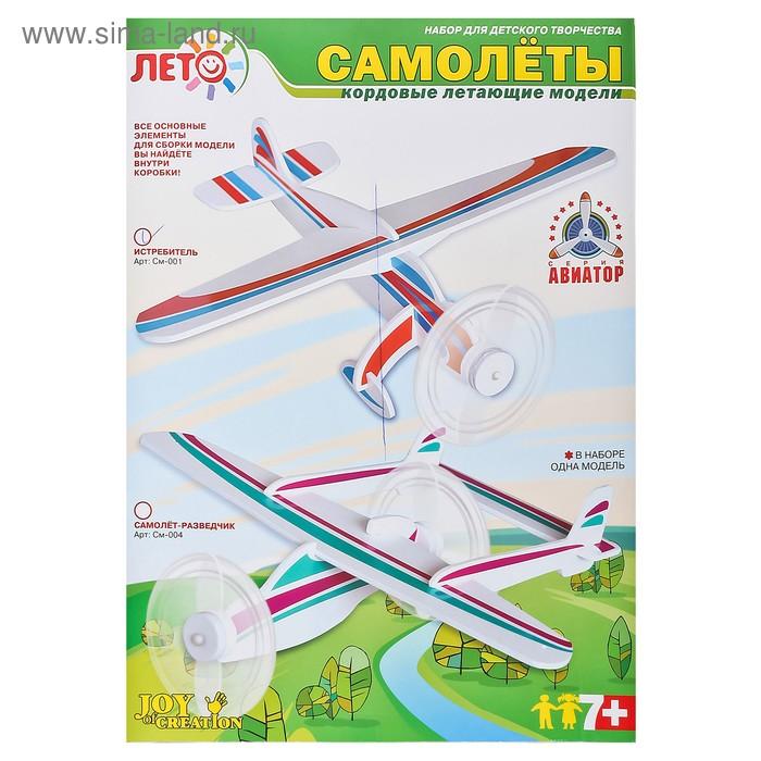 """Набор для изготовления моделей самолетов """"Истребитель"""""""