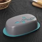 Маслёнка «Taila», цвет бирюзовый