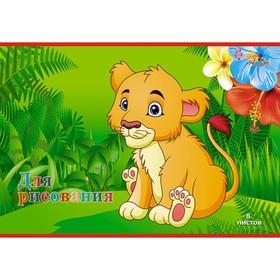 Тетрадь для рисования A4, 8 листов на скрепке «Львёнок», бумажная обложка, блок 80 г/м² Ош