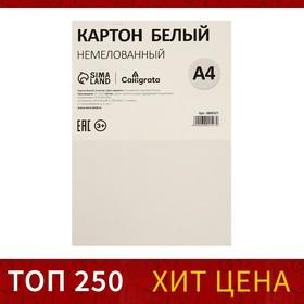 Картон белый А4, 6 листов, 220 г/м2 Calligrata, немелованный, ЭКОНОМ Ош