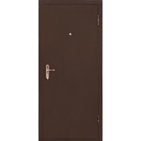 Дверь входная ПРОФИ BMD металл/металл, антик медь 2050х850 (левая)