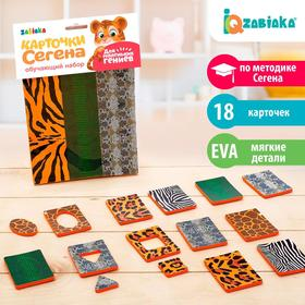 Обучающий набор «Карточки Сегена. Звериный окрас», 18 карточек, материал EVA
