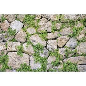 Фотобаннер, 250 × 150 см, с фотопечатью, «Каменная стена» Ош