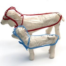 Дождевик с капюшоном для собак OSSO, р. 45 (ДС 45 см), прозрачный, окантовка микс цветов Ош