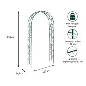 Арка садовая, разборная, 230 × 125 × 36,5 см, металл, зелёная, «Тюльпан» Ош