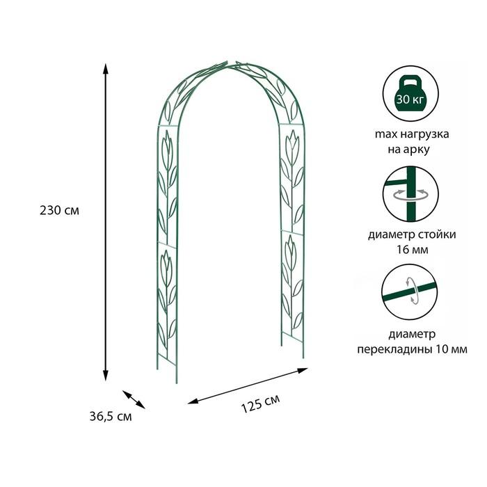 Арка садовая, разборная, 230 × 125 × 36,5 см, металл, зелёная, «Тюльпан»