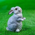 "Садовая фигура ""Кролик"" 10х8х12см - Фото 5"