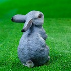 "Садовая фигура ""Кролик"" 10х8х12см - Фото 7"