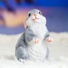 "Садовая фигура ""Кролик"" 10х8х12см - Фото 9"