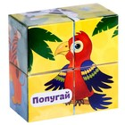 Кубики картонные «Зверята», 4 шт - Фото 8