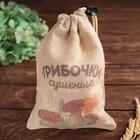 Мешок для хранения овощей «Грибочки», 16 ? 22 см