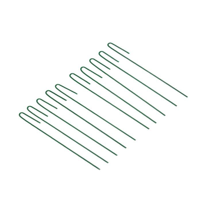 Колышек универсальный, h 30 см, ножка d 0.3 см, набор 10 шт., зелёный, Greengo