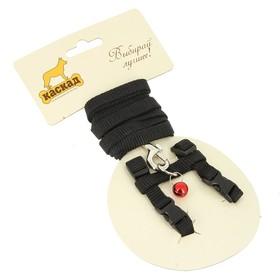 Комплект амуниции для грызунов, 1 см, шлейка 15-25 см, поводок 120 см, нейлон, чёрный Ош