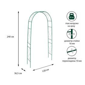 Арка садовая, разборная, 240 × 120 × 36.5 см, металл, зелёная, «Веточка» Ош