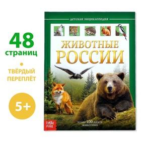 Детская энциклопедия в твёрдом переплёте «Животные России»