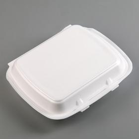 Ланч-бокс одноразовый, 24,7×20,8×6,3 см, 1 секция, цвет белый