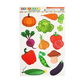 Наклейки для дома «Изучаем овощи», 24 × 37 см Ош