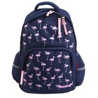 Рюкзак школьный Bruno Visconti, 40 х 30 х 16 см, эргономичная спинка, «Фламинго», синий
