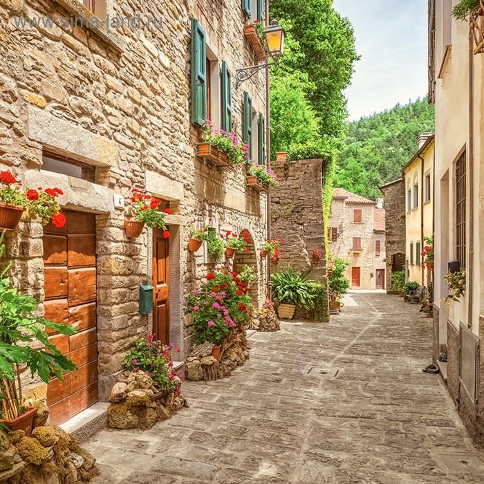 если улица италии фон мясной