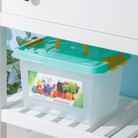 Бокс универсальный для игрушек и продуктов Альт-Пласт, 10 л, 35.9×24.2×21.1 см