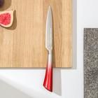 Нож кухонный «Спектр», лезвие 12 см, цельнометаллический, цвет МИКС - Фото 1