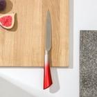 Нож кухонный «Спектр», лезвие 12 см, цельнометаллический, цвет МИКС - Фото 2