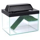 Террариум для черепах 12л, с крышкой, полкой и лесенкой, 30 х 20 х 20 см
