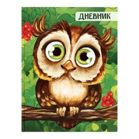 Дневник школьника 1-4 класс «Сова», твёрдая обложка, глянцевая ламинация, 48 листов Ош