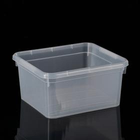 Контейнер для хранения Basic, 2 л, 18,5×16×9 см, цвет прозрачный